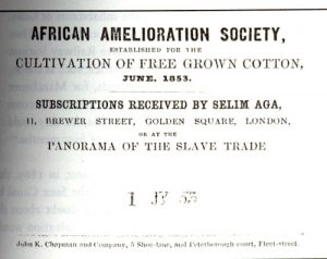 African Amelioration Society